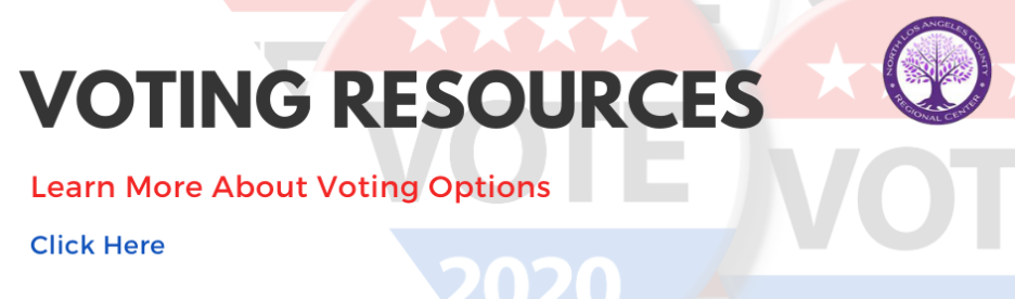 Voting Resources Slide English